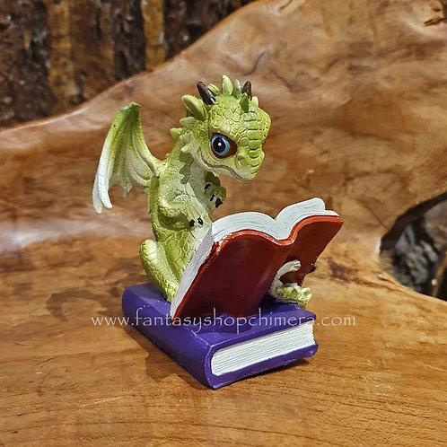 how to breath fire student dragon book reading beeldje draak boek lezen