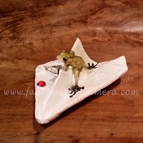 little frog on paper plane kikkertje op vouwvliegtuig vliegtuigje papier
