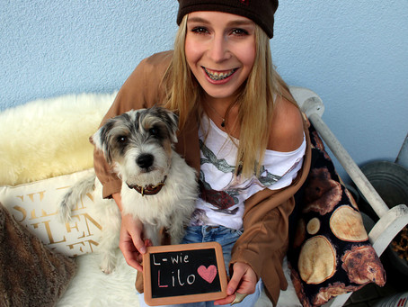 Lilos Hunde- A B C Teil 1