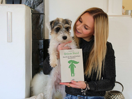 Lilo the Green Dog
