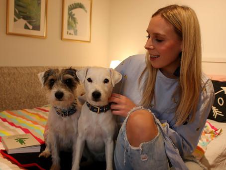 Lilo and Unique Dog