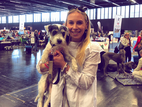 Lilo und die Hundeausstellung