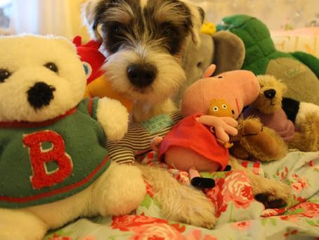 Lilo and the plush toys