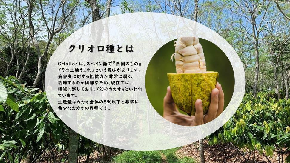 チョコレート紹介ペ-ジ ロシオ➆.jpg