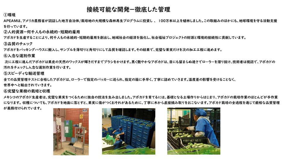 Presentación2 持続可能な開発について.jpg