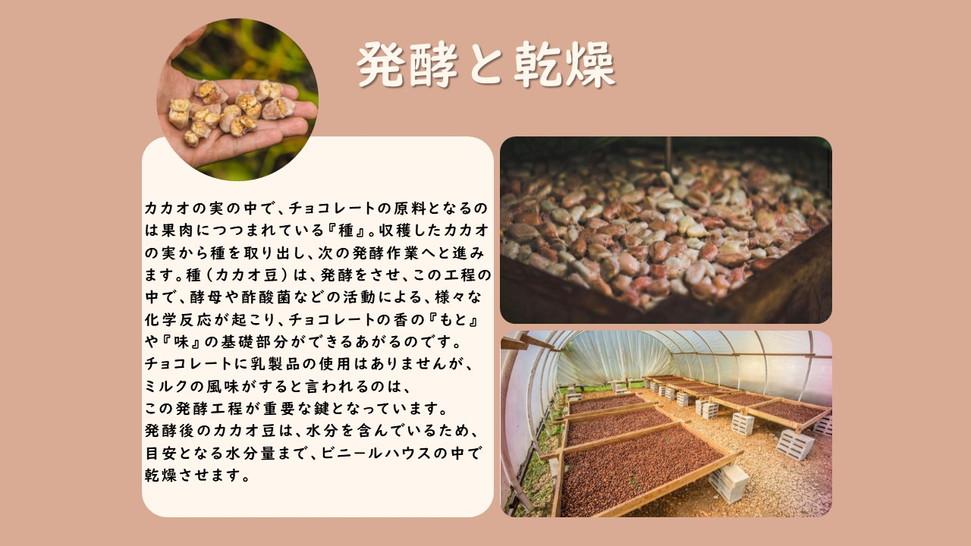 Presentación2 発酵と乾燥について.jpg