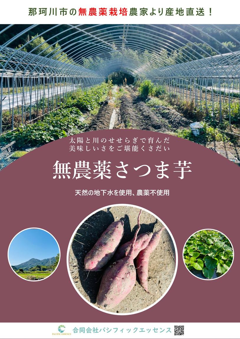 A2_tate 無農薬さつまいもポスタ-.jpg