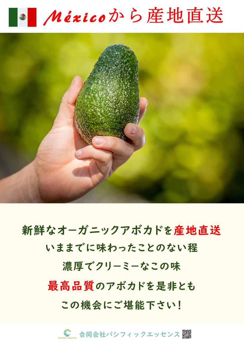 A2_tate アボカドポスタ-(産地直送) - 写真.jpg