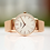 Thumbnail: Ladies Architēct Blanc +Your Own Handwriting + Rose Gold Mesh Strap