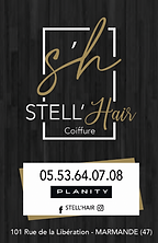 Carte visite stell'hair