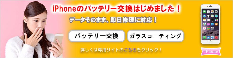 ip_banner_OK.jpg