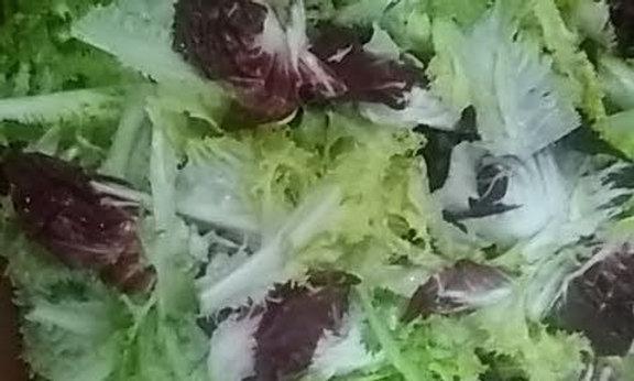 Salade mélangée (variété chicorée)  400 grammes