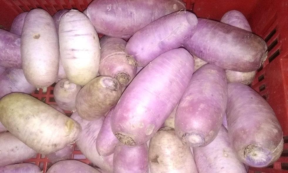 Radis purple X2