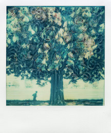 La corsa - Polaroid Artistic TZ Manipolata