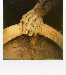 Guerriero - Polaroid Artistic TZ Manipolata