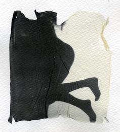Fertilità - Polaroid  - Lift Off