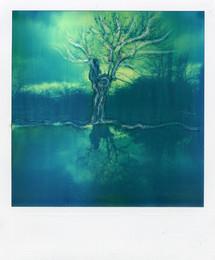 Riflesso - Polaroid Artistic TZ Manipolata