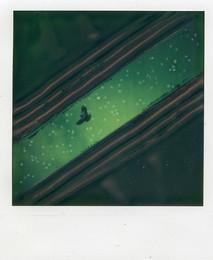 Scorcio - Polaroid Artistic TZ Manipolata