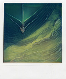 Prua - Polaroid Artistic TZ Manipolata