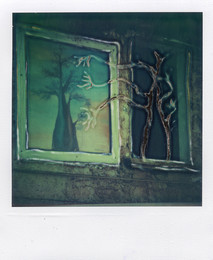 Anima Gemella - Polaroid Artistic TZ Manipolata