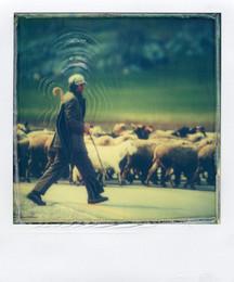 Il Pastore - Polaroid Artistic TZ Manipolata