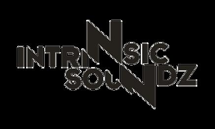 Intrinsic Soundz - Logo