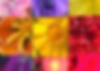 Screen Shot 2020-05-20 at 10.05.31 AM.pn