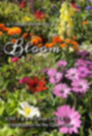 bloom front copy.png