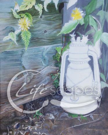 Lantern, garden, flowers Part 3