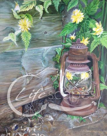 Lantern, garden, flowers Part 5