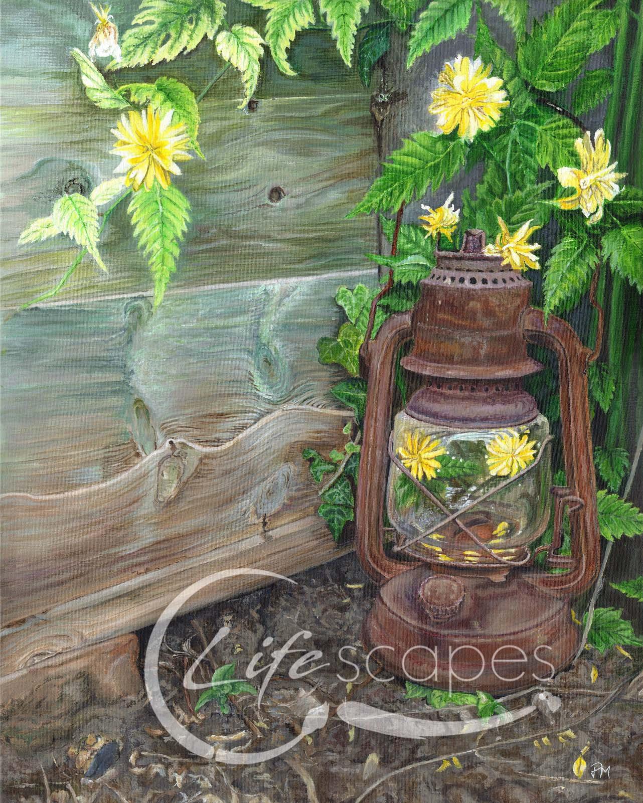 Lantern, Garden and Flowers