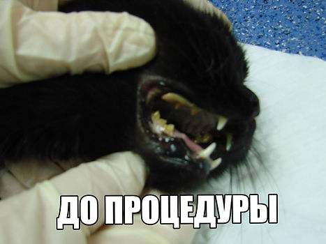 G7UvzMXUcBM.jpg