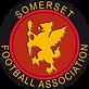 Somerset-FA.PNG