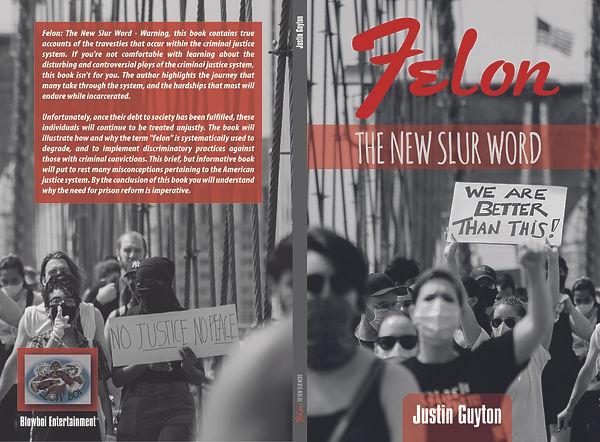 FELON THE NEW SLUR WORD 6X9-01.jpg