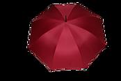 parasol dobedu.png