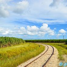 Batey Cacata, La Romana, culture canne à sucre