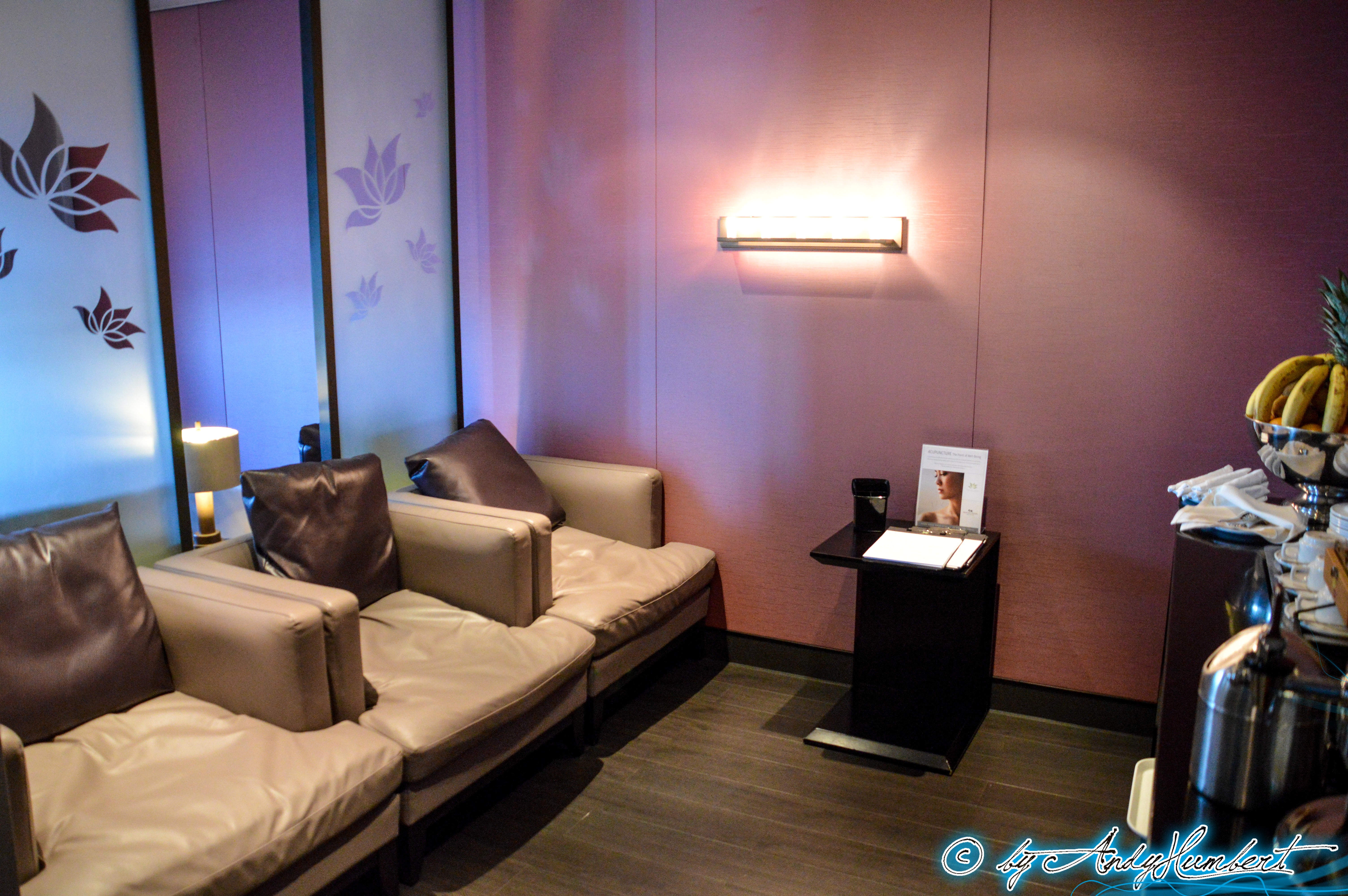 Lotus Spa : Salon (pont 4)