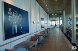 Oceanview Café (pont 14)