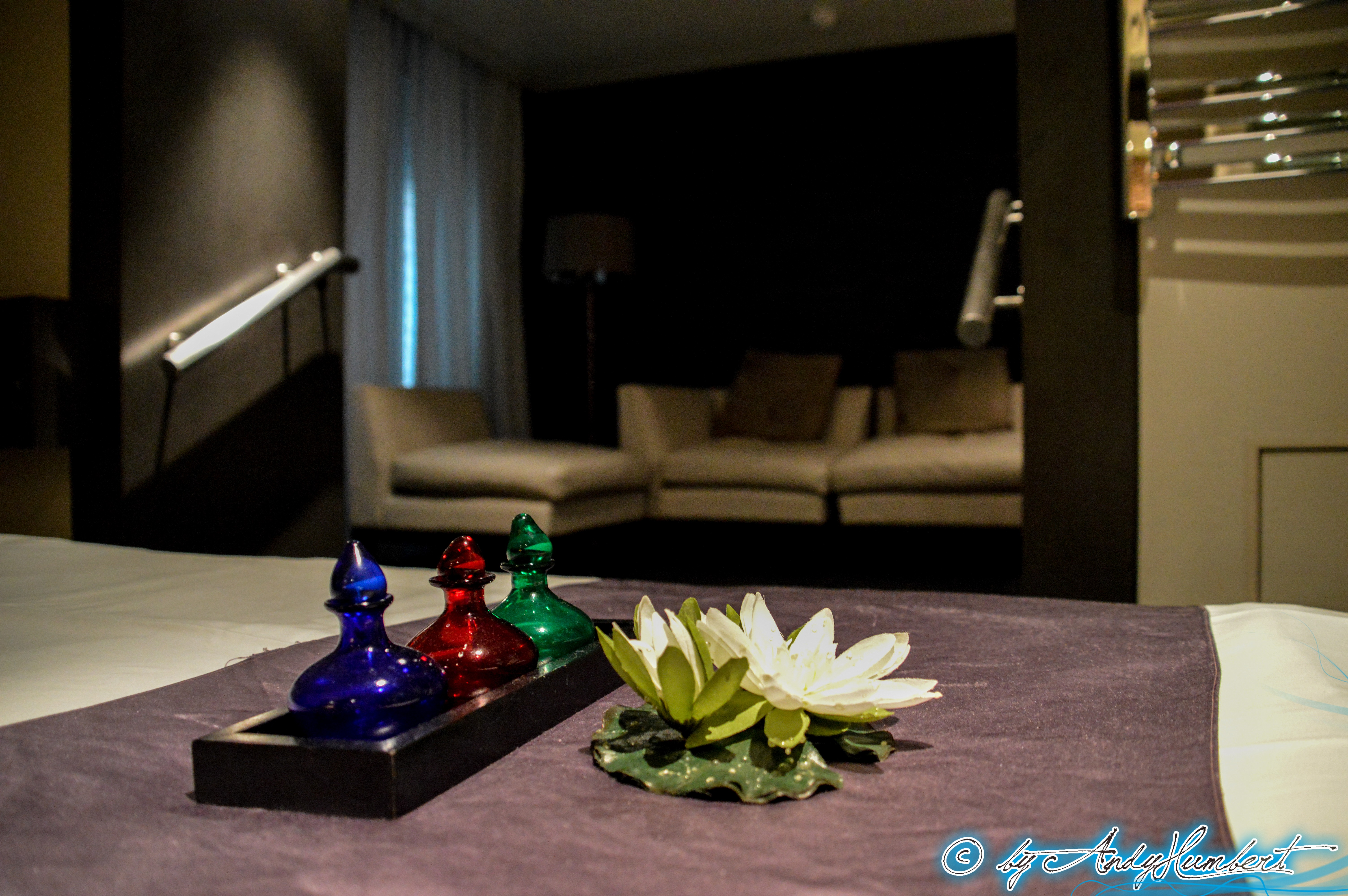 Lotus Spa : Massage (pont 4)
