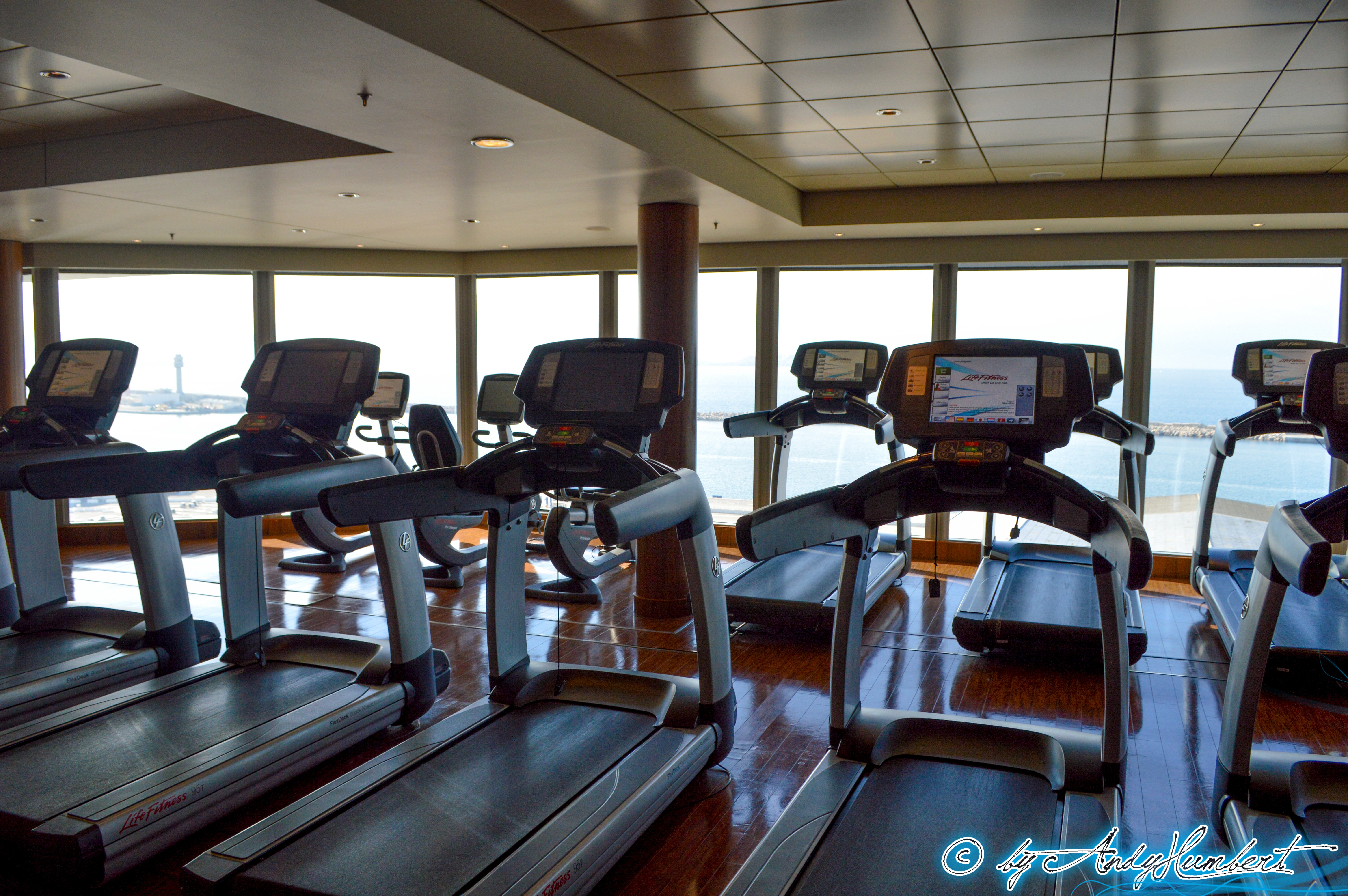 Pulse Fitness Center (pont 14)
