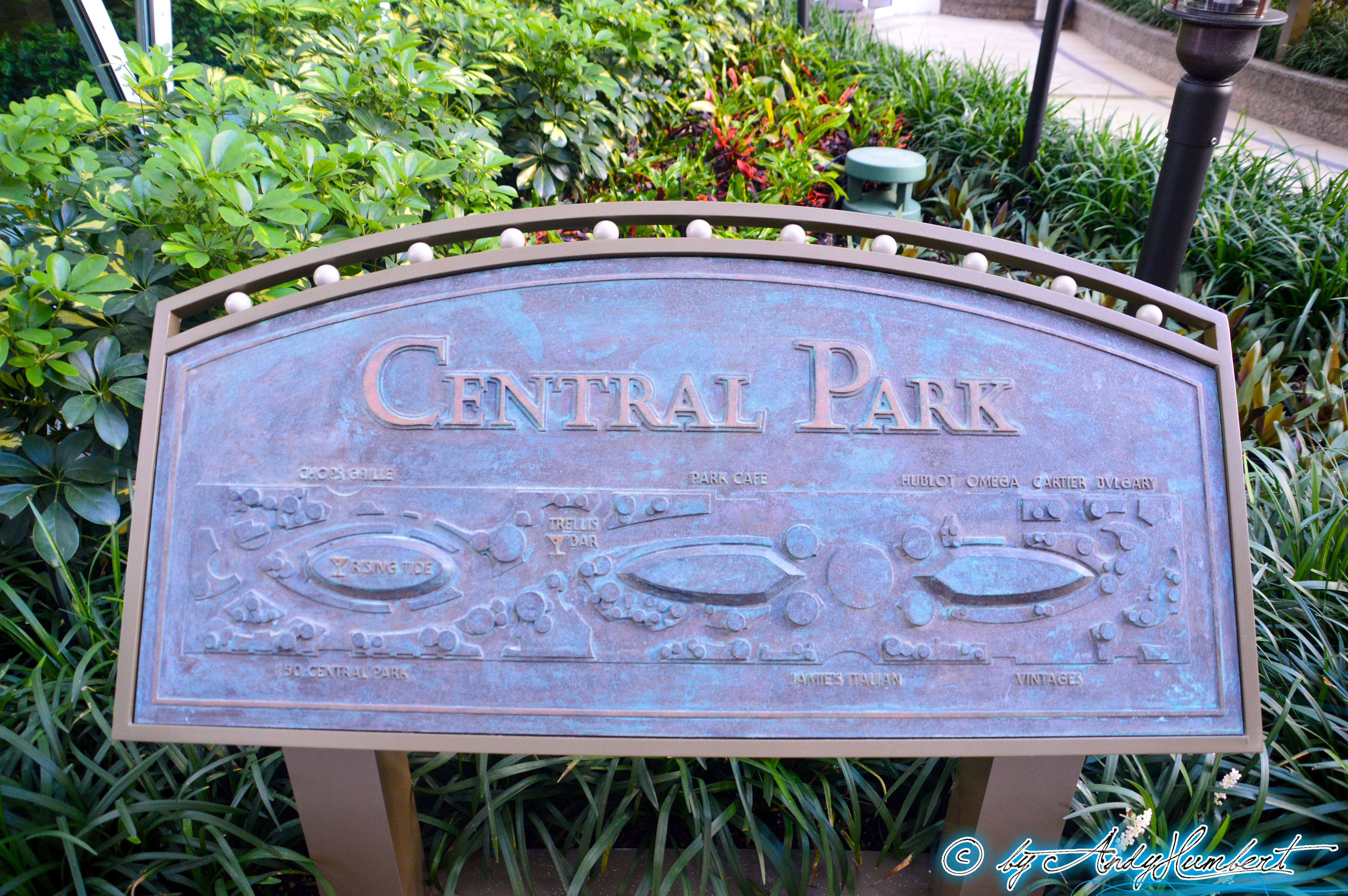 Central Park (pont 8)