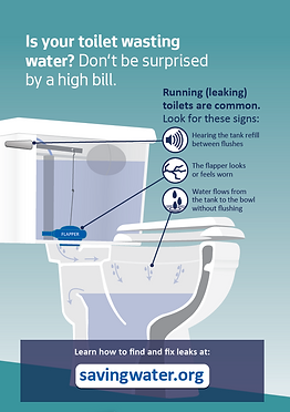 Toilet leaks.PNG