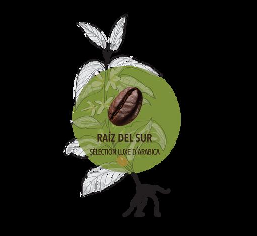 Logo Raiz del sur