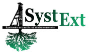 SystExt