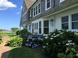 Landscape Company In The Hamptons