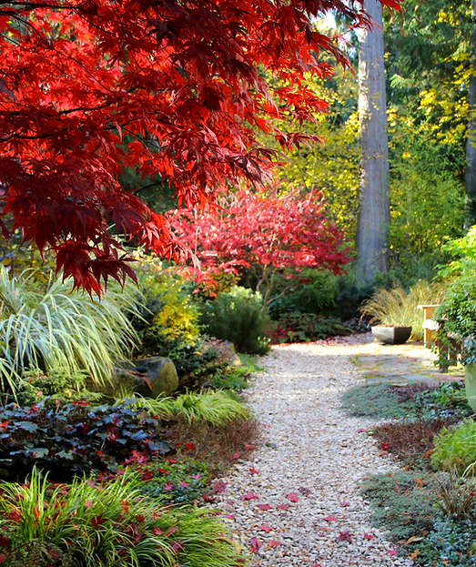 Hamptons Landscaping