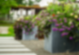 Hampton Landscape Services