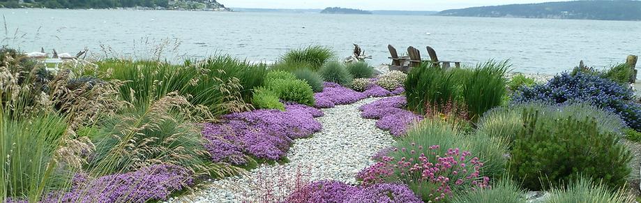 Hamptons Landscape Services