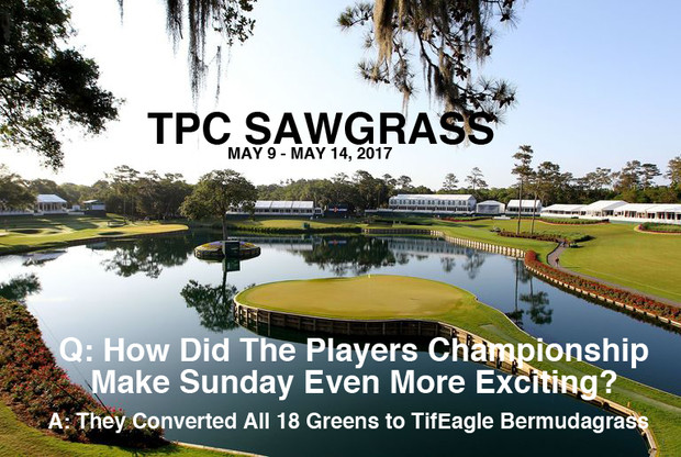 SAWGRASS CHOOSES TIFEAGLE FOR 2017 TPC