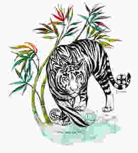 Tigre, disegno fatto a mano disegno fatto a mano con china e acquerello.